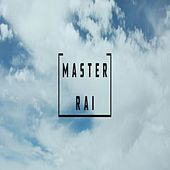 Master Rai by Various Artists