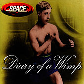 Diary Of A Wimp by Space