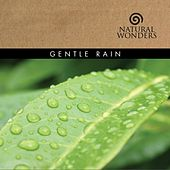 Gentle Rain by David Arkenstone