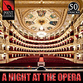 A Night at the Opera: 50 Favourites by Various Artists