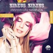 Zirkus Zirkus, Vol. 12 - Elektronische Tanzmusik by Various Artists