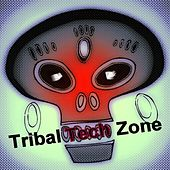Tribal Tech Zone by Various Artists