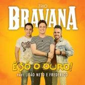 É Só o Ouro by Trio Bravana