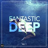 Fantastic Deep, Vol. 1 by Various Artists