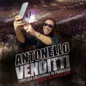 Tortuga un giorno in Paradiso stadio Olimpico by Antonello Venditti