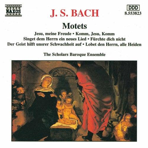 Motets by Johann Sebastian Bach