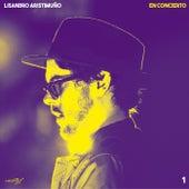 En Concierto 1 by Lisandro Aristimuño