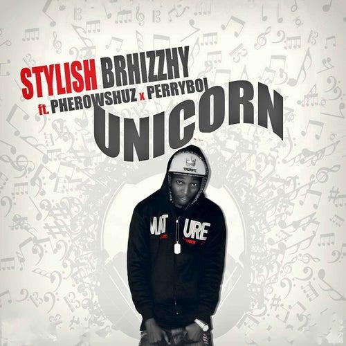 Unicorn by Stylish Brhizzhy
