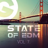 State Of EDM, Vol. 7. - Single by Rich Knochel