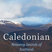Caledonian: Relaxing Sounds of Scotland by Various Artists