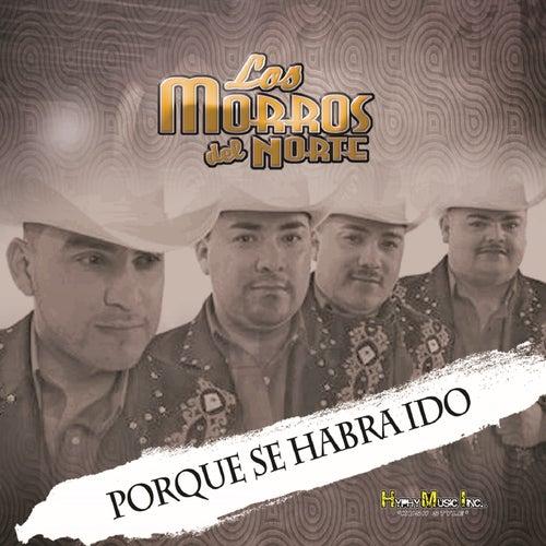 Porque Se Habra Ido by Los Morros Del Norte
