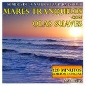 Sonidos de la Naturaleza para Dormir: Mares Tranquilos Con Olas Suaves: 120 Minutos Edición Especial by Amadeus