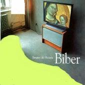 Sonata del Rosario, Biber by Elisabeth Geiger