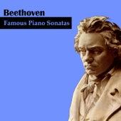 Beethoven: Famous Piano Sonatas by Dubravka Tomšič-Srebotnjak