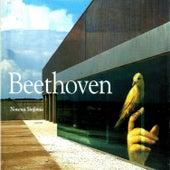 Beethoven, Novena Sinfonía by Otto Edelmann
