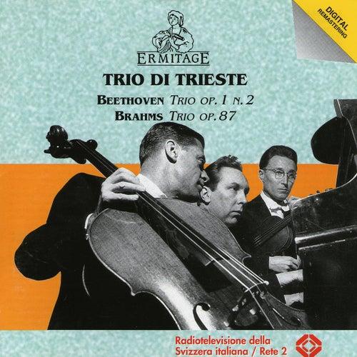 Trio di Trieste, Beethoven, Brahms by Trio Di Trieste