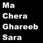 Ma Chera Ghareeb Sara Hits by Various Artists