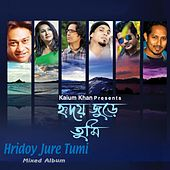 Hridoy Jure Tumi by Various Artists