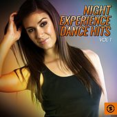 Night Experience Dance Hits, Vol. 1 by Various Artists