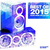 Best of 2015 - House Music Collection by Various Artists