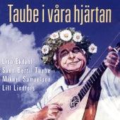 Taube i våra hjärtan by Various Artists