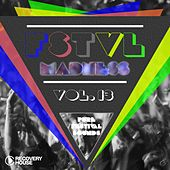 FSTVL Madness, Vol. 13 - Pure Festival Sounds by Various Artists