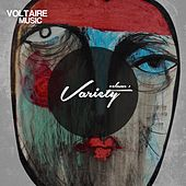 Voltaire Music pres. Variety Issue 1 by Various Artists