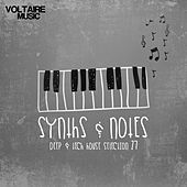Synths and Notes 27 by Various Artists