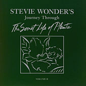 Stevie Wonder's Journey Through The Secret Life of Plants by Stevie Wonder