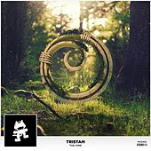 The Vine by Tristam