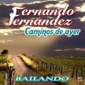 Caminos de Ayer by Fernando Fernandez