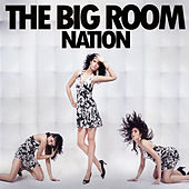 The Big Room Nation by Various Artists