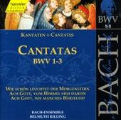 J.S. Bach - Cantatas BWV 1-3 by Bach-Collegium Stuttgart