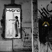 Hybrid by Various Artists