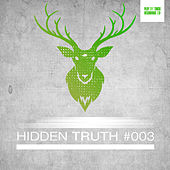Hidden Truth #003 by Various Artists