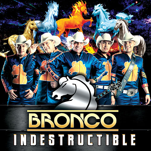 Indestructible by Bronco