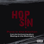 Pans In The Kitchen by Hopsin