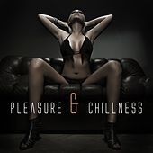 Pleasure & Chillness by Various Artists