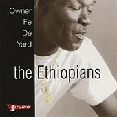 Owner Fe De Yard by The Ethiopians