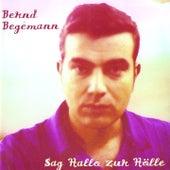 Sag Hallo zur Hölle by Bernd Begemann
