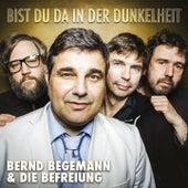 Bist du da in der Dunkelheit by Bernd Begemann