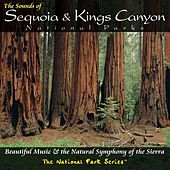 The Sounds of Sequoia and Kings Canyon National Parks by Various Artists