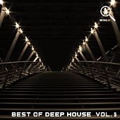 Best of Deep House, Vol. 5 by Various Artists