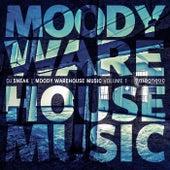Moody Warehouse Music Volume 1 by DJ Sneak