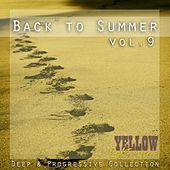 Back To Summer, Vol. 9 - EP by Various Artists