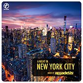 A Night in New York City (Mixed by DJ Amadeus) von Various Artists