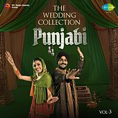 The Wedding Collection - Punjabi, Vol. 3 by Various Artists