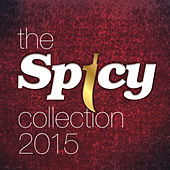The Spicy Collection 2015 by Various Artists