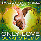 Only Love (Suyano Remix) by Shaggy