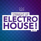 Straight Up Electro House! Vol. 14 by Various Artists